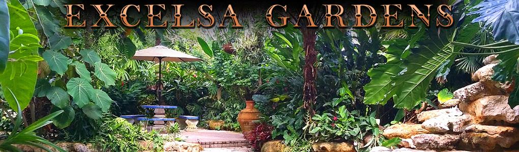 Excelsa Gardens